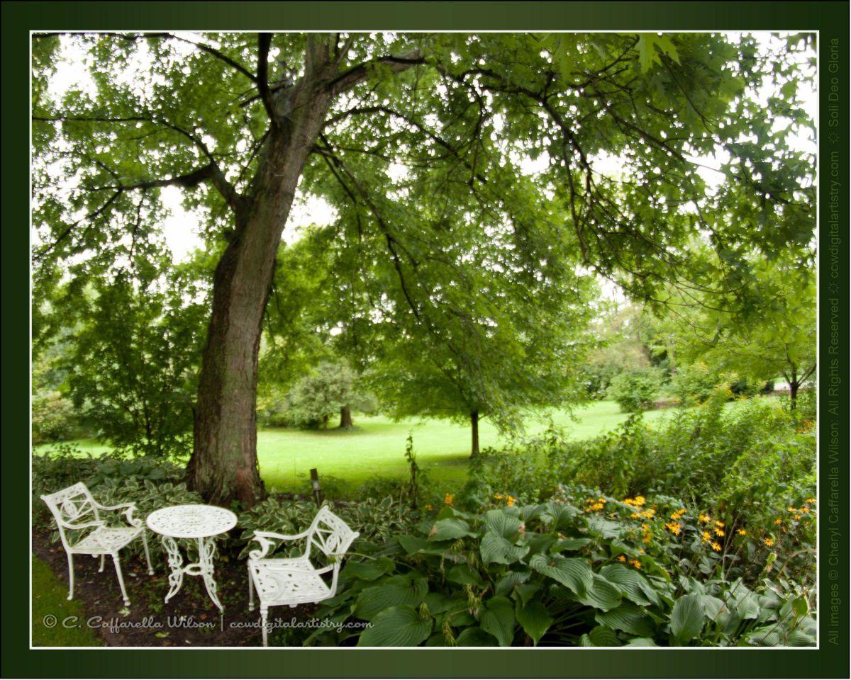 CostcoCard10-Garden-c14.jpg